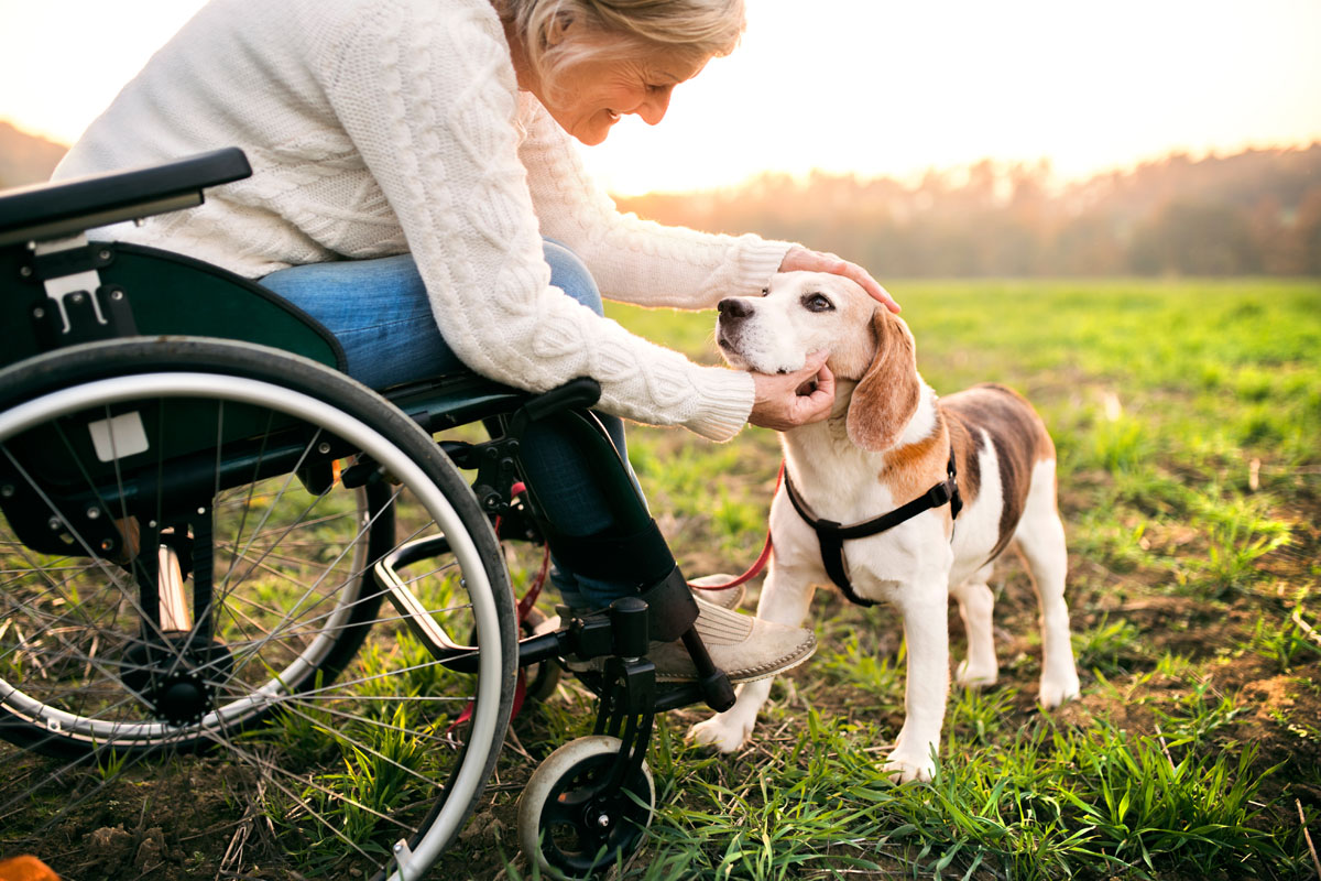 Pets In Assisted Living